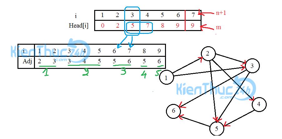 Ví dụ minh họa tổ chức danh sách kề bằng mảng một chiều